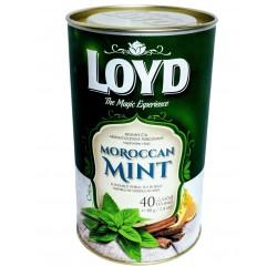 Loyd bylinný čaj Moroccan Mint 1x40 sáčků 80g