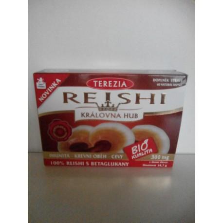 100% Reishi BIO 60 natural kapslí