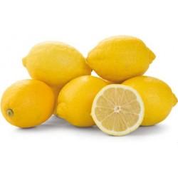 Citrony džusové Eureka Metro Chef 1x5kg