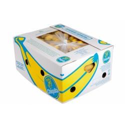 Banány karton 18,14 kg