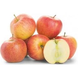 Jablka Jonagored 65+ 1x1kg