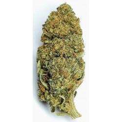 CBD marihuana konopí květy palice – Skywalker 1g