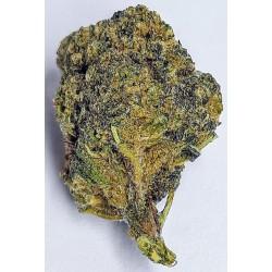 CBD marihuana konopí květy palice – Blueberry 1g