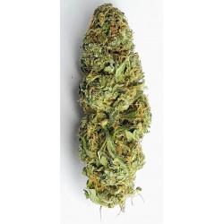 CBD marihuana konopí květy palice – Lemon Haze 1g