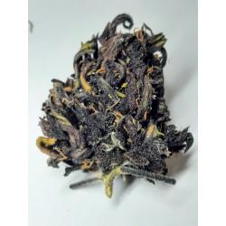 Limitovaná edice CBD marihuana konopí květy palice – Blackberry Kush Purple 1g