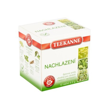 Teekanne Nachlazení bylinný čaj 10x2g